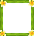 Natural Frame Made Bamboo and Frangipani Flowers
