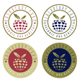 vintage labels set of raspberry and blackberry vector image vector image