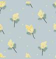 yellow mimosa seamless pattern vector image