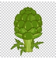 Artichoke isolated organic food farm food vector image vector image
