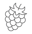blackberry thin line icon fruit and vitamin vector image vector image
