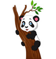 cartoon panda climbing a tree vector image