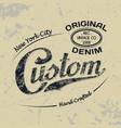 custom ny 1 vector image vector image