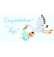 happy stork carrying cute vector image vector image