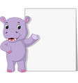 hippo with blank sign vector image vector image