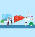 human liver health care checkup analysis vector image