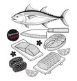 salmon fish meat japan food doodle elements vector image vector image