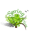 Spring Tree vector image vector image