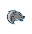 wolf logo icon design vector image