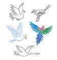 Birds set linear silhouette vector image vector image