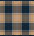 blue and beige tartan plaid scottish pattern vector image vector image