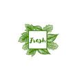 fresh label leaf ornament logo vector image