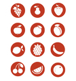 fruits pictogram vector image