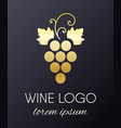 grapes logo design element vector image