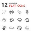 wildlife icons vector image vector image