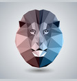 abstract polygonal tirangle animal lion hipster vector image vector image