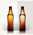 beer bottle empty glass for craft beer vector image