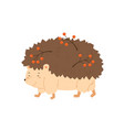 cute hedgehog walking and carry rowan branches vector image vector image