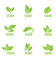 leaves icon set isolated on white vector image vector image
