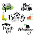 letterings spa and beauty theme vector image