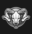 ram skull on a dark background on a dark vector image vector image