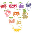 Set of Fruit Labels - 10 items vector image vector image