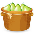 a basket of pear vector image vector image