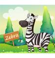 A zebra beside a signboard vector image vector image
