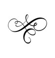 calligraphy element flourish hand drawn vector image vector image