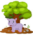 cartoon hippos in the jungle vector image vector image