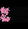 cherry blossom branch with pink flowers on a vector image vector image