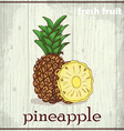 Hand drawing of pineapple Fresh fruit sketch vector image vector image