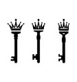 keys with crown vector image vector image