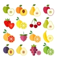 set flat design icons for fruits vector image vector image