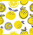 stylish oranges fruits seamless pattern vector image vector image