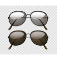 two different color lens of sunglasses vector image vector image