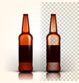 beer bottle product packing brown design vector image vector image