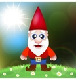 Cute Cartoon Garden Gnomes vector image vector image