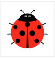 cute ladybug in flat style cartoon vector image