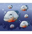 Piranha in river vector image vector image