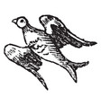 bird volant is used in heraldry to express the vector image vector image