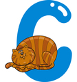 C cat vector image vector image