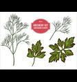 collection of hand drawn colored greenery vector image