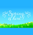 hello spring hand drawn lettering with flourish vector image vector image