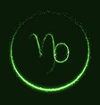 shiny astrological symbol of capricorn vector image vector image