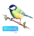 watercolor style bird vector image vector image