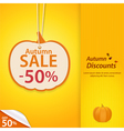 autumn pumpkin discount label vector image vector image