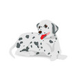 dalmatian sitting on floor with shadow vector image vector image
