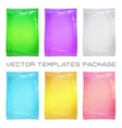package blank template vector image vector image
