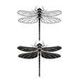 dragonfly silhouette icons set vector image